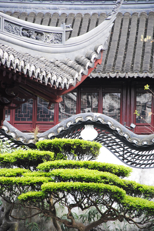 yu-garden-roof-wall-and-tree