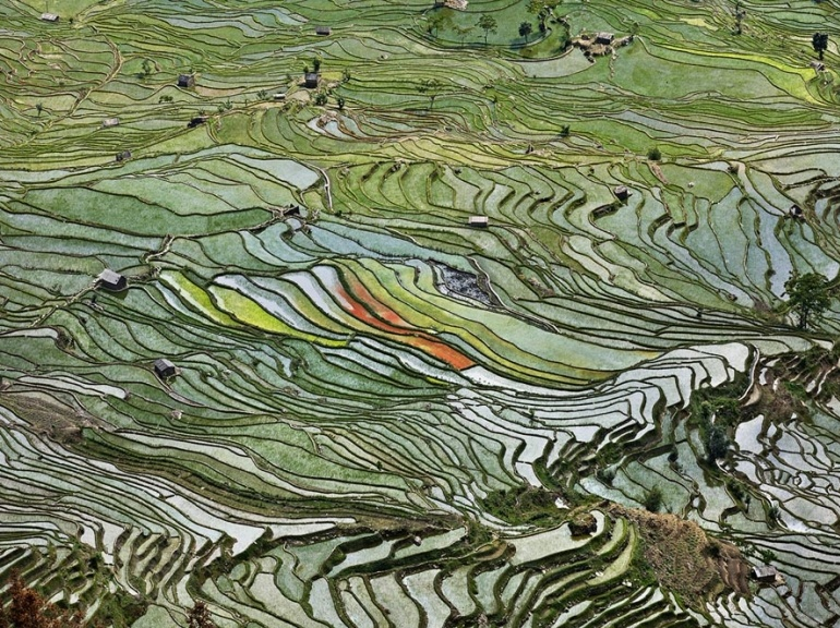 edward-burtynsky-photography-rice-terraces-2-western-yunnan-province,-china-2012