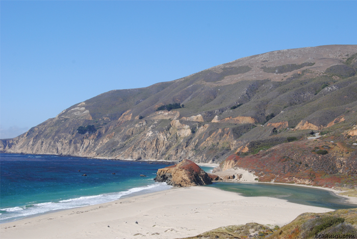 wild-beach-big-sur