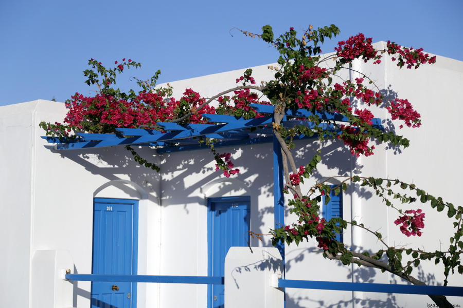 paros-home-with-flower