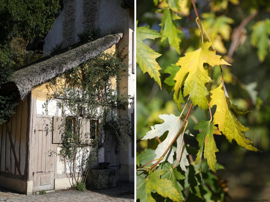 couleurs-automne-hameau-de-la-reine-versailles