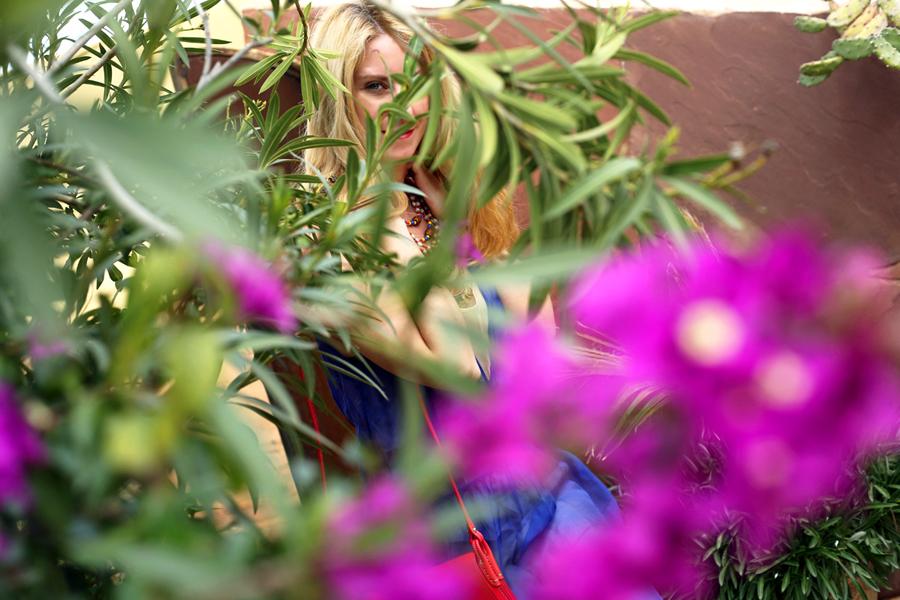 bougainvillier-violet