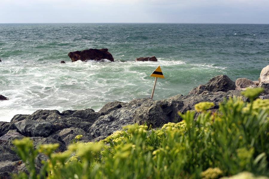 wild-ocean-side