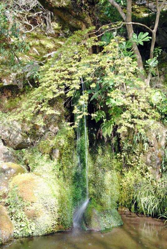 kyoto-garden-fountain-around-ginkaku-ji-temple
