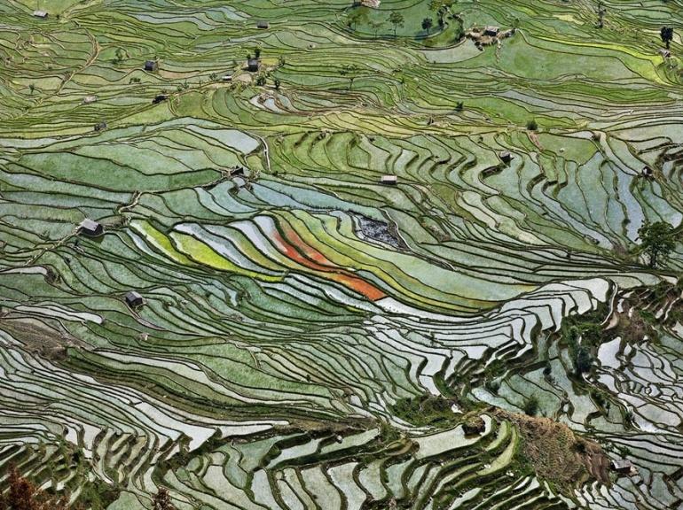 edward-burtynsky-photography-rice-terraces-2-western-yunnan-province,-china-2012