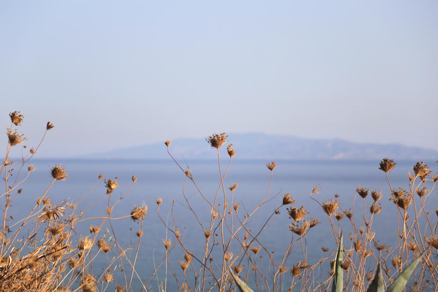 around-paros-sea-and-flower-skyline